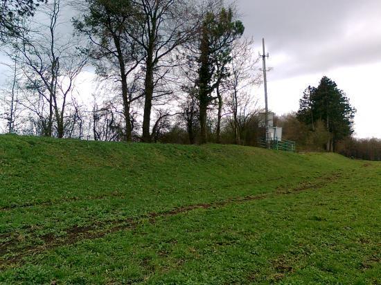 levée de voie ,Ouest Gruyères; relais T.L
