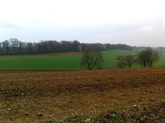 tracé voie limite de champs,ouest Gruyères